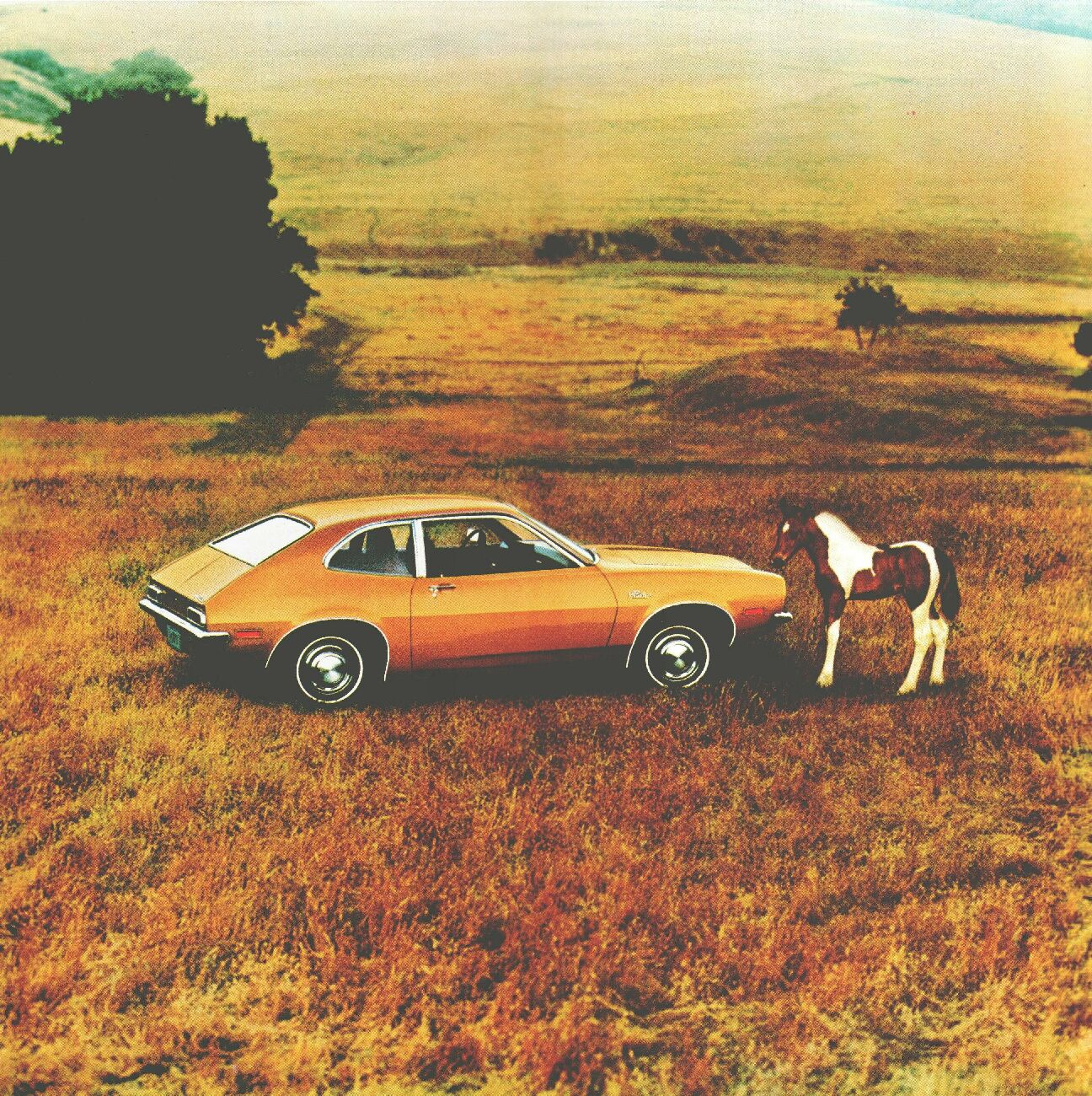 the ford pinto project Fines can be costly an estimated 50 pinto owners from as far away as california and pennsylvania showed off their prized cars amid hundreds of ford's more popular and elegant models at the annual ford employee car show today the pinto stampede raises money for the wounded warrior project.